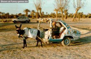 carro um cavalo