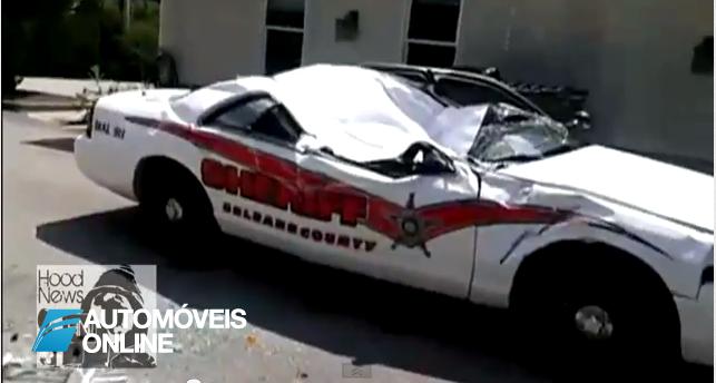 Insólito! Por vingança esmagou carros da polícia