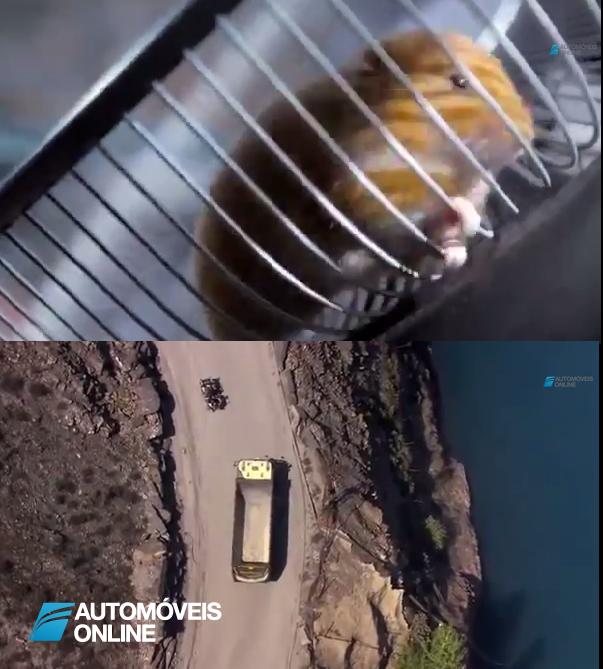 Vídeo incrível! Volvo mostra um hamster a dirigir o novo camião FMX de 15 toneladas