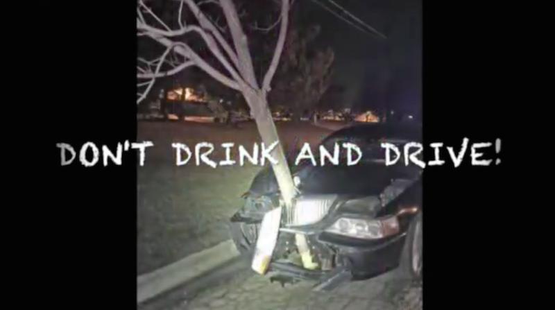 Apanhada a conduzir com árvore espetada no capot