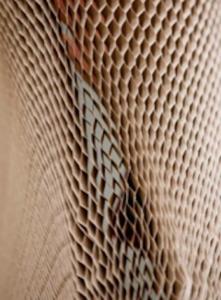 Ninho de Abelha Ford